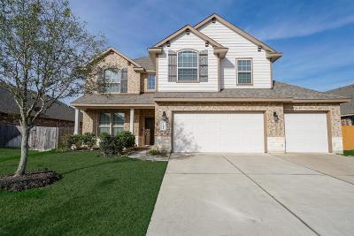 Katy Single Family Home For Sale: 23218 Verona View Lane