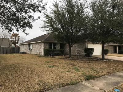 Katy Single Family Home For Sale: 5119 Manorfield Drive