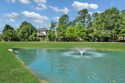 Single Family Home For Sale: 28950 Twisted Oak Drive