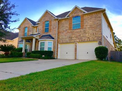 Houston Single Family Home For Sale: 4723 Autumn Pine Lane