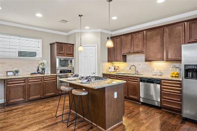 Houston Single Family Home For Sale: 2520 Bevis Street