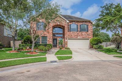 Pearland Single Family Home For Sale: 3504 Shasta Court