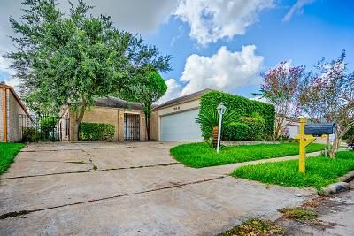 Houston Single Family Home For Sale: 7819 Duffield Lane