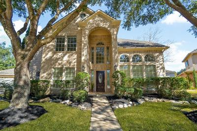 Sugar Land Single Family Home For Sale: 4123 Amber Trace Court