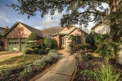 Pearland Single Family Home For Sale: 3923 Balmoral Lane