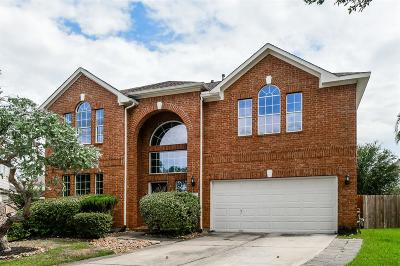 Tomball Single Family Home For Sale: 12111 Piney Way Court