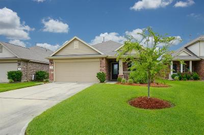 Houston Single Family Home For Sale: 10910 Whistlers Cottage Court