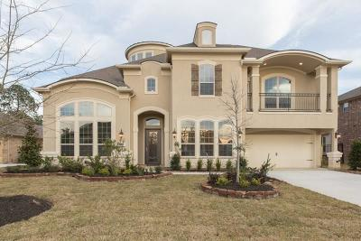 Spring Single Family Home For Sale: 20150 E Hachita Circle