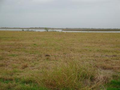 Palacios Residential Lots & Land For Sale: Lot 7 Waypoint Boulevard