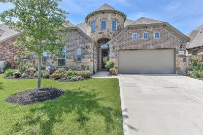 Single Family Home For Sale: 15415 Dundas Drive
