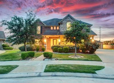 Katy Single Family Home For Sale: 6134 Emberwood Falls Drive