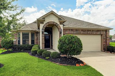 League City Single Family Home For Sale: 941 Maresca Lane
