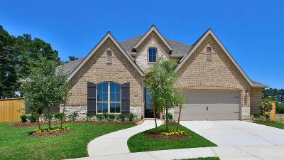 Tomball Single Family Home For Sale: 19002 Dublin Bay Boulevard