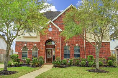 Sugar Land Single Family Home For Sale: 4227 Roundtree Lane