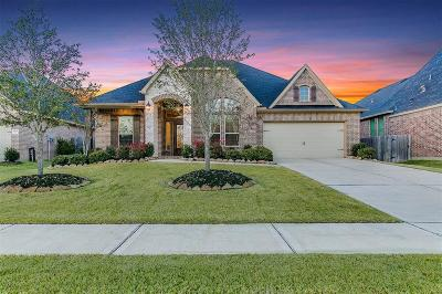 Fort Bend County Single Family Home For Sale: 29202 Davenport Drive