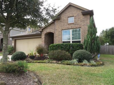 Eagle Springs Single Family Home For Sale: 17011 Sculptured Rock Lane