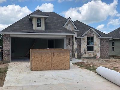 Montgomery Single Family Home For Sale: 163 Brocks Lane