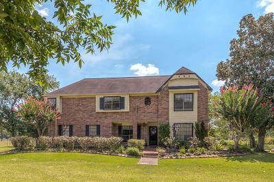 Manvel Single Family Home For Sale: 6225 Louisiana Street