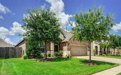 Pearland Single Family Home For Sale: 2704 Secret Falls Court