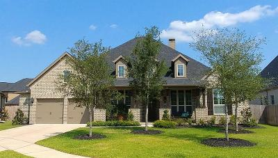 Katy Single Family Home For Sale: 2007 Terrace Green Court