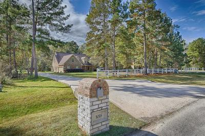 Huffman Single Family Home For Sale: 1018 Commons View Drive