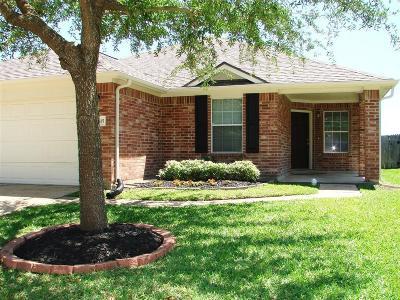 Katy Single Family Home For Sale: 19815 Byron Meadows Dr