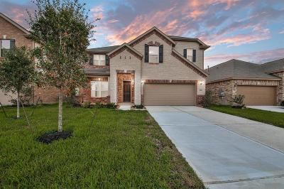 Pearland Single Family Home For Sale: 3322 Anderwood Arbor Lane