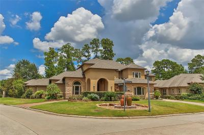 Spring Single Family Home For Sale: 16518 Marble Creek Falls Court