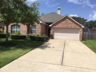 Houston Single Family Home For Sale: 5911 Brownstone Ridge Lane