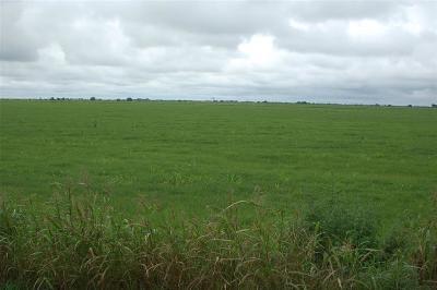 Colorado County Farm & Ranch For Sale: County Road 114