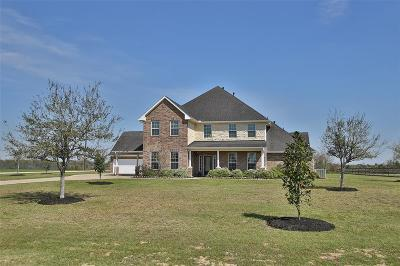Katy Single Family Home For Sale: 4638 Shadow Grass Drive
