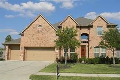 Richmond Single Family Home For Sale: 9107 Andes Ridge Lane
