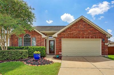 Pearland Single Family Home For Sale: 3323 Bright Landing Lane
