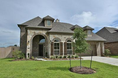Tomball Single Family Home For Sale: 10803 Crossbow Arrow Court