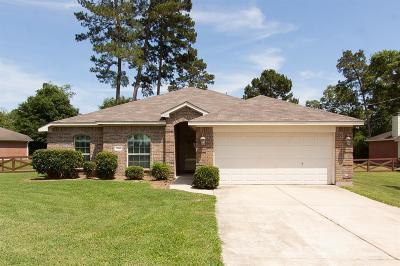 Montgomery County Single Family Home For Sale: 27017 Del Rio Trail W