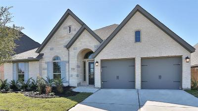 Pearland Single Family Home For Sale: 3120 Cactus Grove Lane