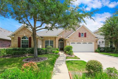 Sugar Land Single Family Home For Sale: 807 Overdell Drive