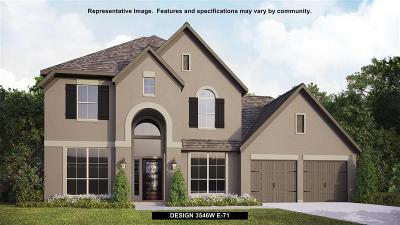 Fort Bend County Single Family Home For Sale: 23219 Rosen Mill Drive