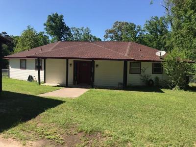 Conroe Single Family Home For Sale: 15141 McRae Lake Lake