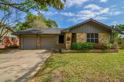 Houston Single Family Home For Sale: 10519 Brinwood Drive