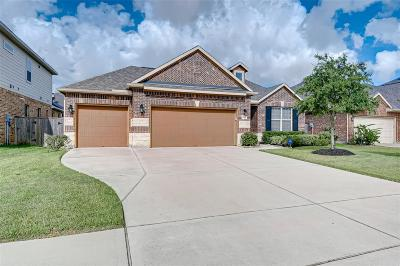 Fulshear Single Family Home For Sale: 4118 Lodge Ranch Court