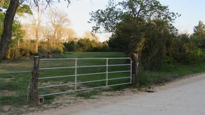 Austin County Country Home/Acreage For Sale: 15324 Sycamore Road