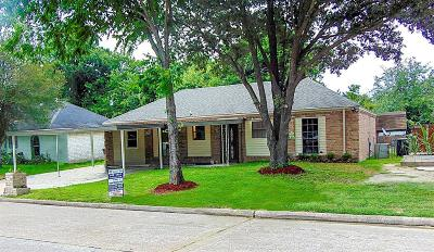 Houston Single Family Home For Sale: 8632 Brock Park Boulevard