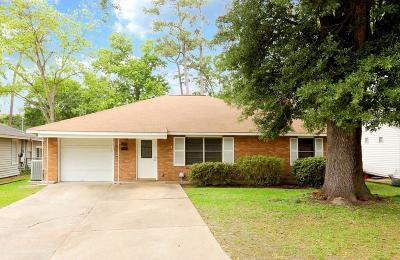 Houston Single Family Home For Sale: 1310 Candlelight Lane