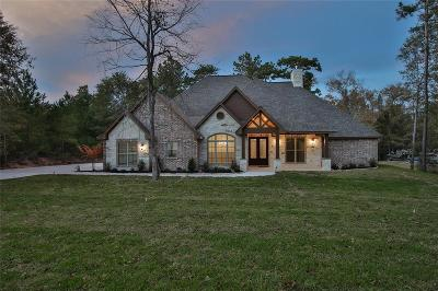 Montgomery Single Family Home For Sale: 166 Lyndsey Drive