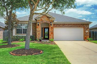League City Single Family Home For Sale: 6172 New Castle Lane