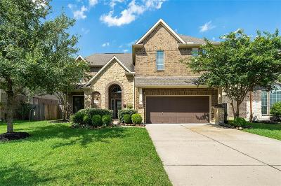 Galveston County, Harris County Single Family Home For Sale: 2218 Daroca Drive