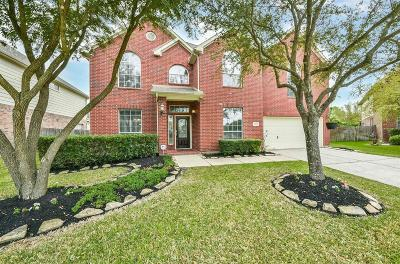 Katy Single Family Home For Sale: 24902 Falcongrove Lane