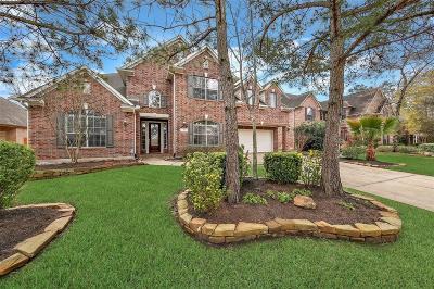 Spring Single Family Home For Sale: 15 Wooded Path Place
