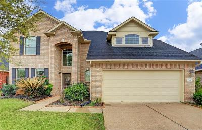 Manvel Single Family Home For Sale: 20 Palmdale Lane